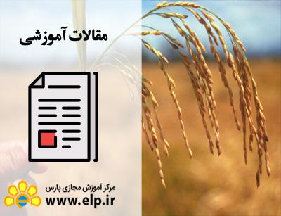 مقاله زراعت و اصلاح نباتات