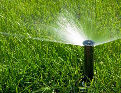 مقاله آشنایی با روشهای آبیاری قطره ای