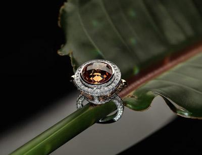 عکاسی صنعتی و تبلیغاتی شاخه جواهرات و اشیا درخشنده