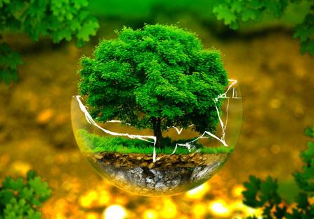 15 اسفند روز درختکاری گرامی باد