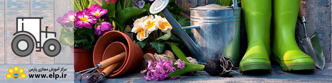 باغبانی گیاهان آپارتمانی