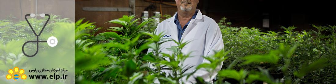 پرورش و تکثیر گیاهان دارویی