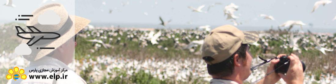 *راهنمای پرنده نگری و شناخت پرندگان طبیعت گردی