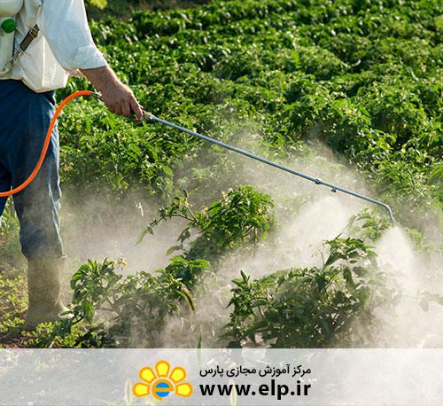آفت کش ها در میوه های گرمسیری و نیمه گرمسیری – a- 13118