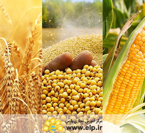 مبانی و اصول بازاریابی فرآورده های کشاورزی