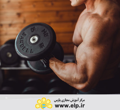 comprehensive package of fitness