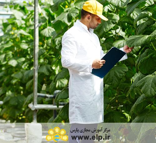 * کارآفرینی بخش کشاورزی