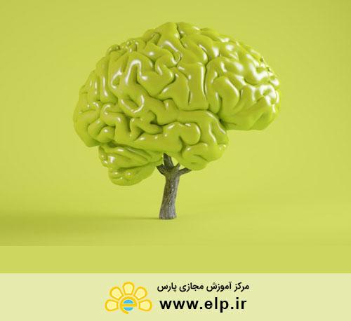 روانشناسی خلاقیت